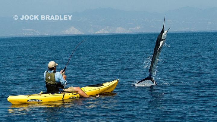 Fais pas le Marlin (Espadon en Kayak)  ! !