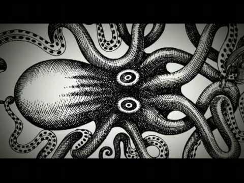 The myth of the Kraken