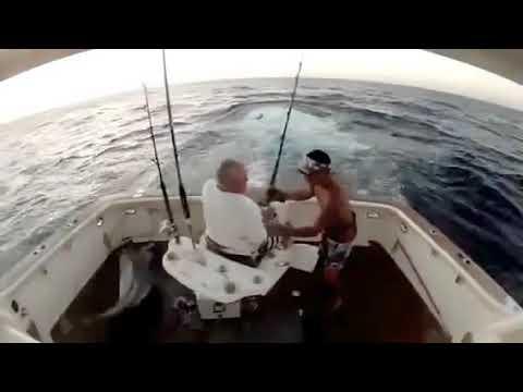 On fait moins le Marlin !