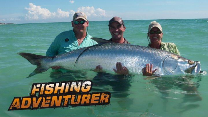 Big Big Big Fish
