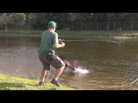 Un poisson pour deux pêcheurs