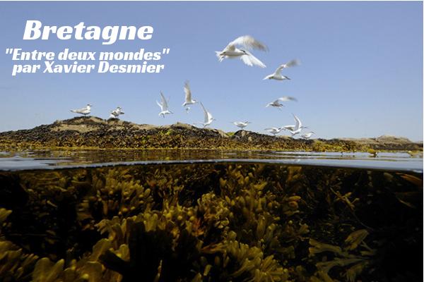 Bretagne «Entre deux mondes» par Xavier Desmier