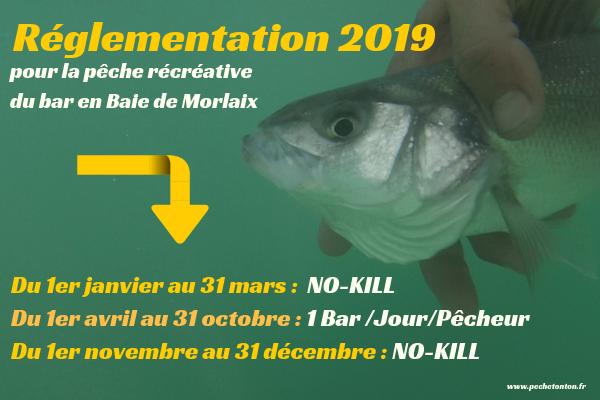 La pêche du bar en 2019