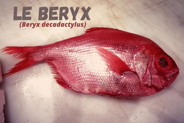 Le Beryx