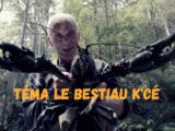 Téma le Bestiau k'cé